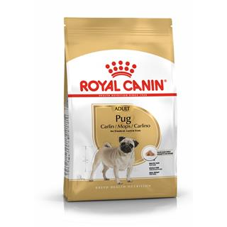 Royal Canin Mops Adult
